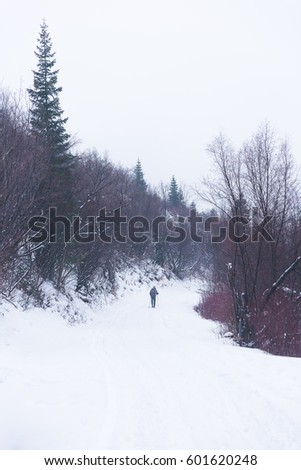 Skiing in forest