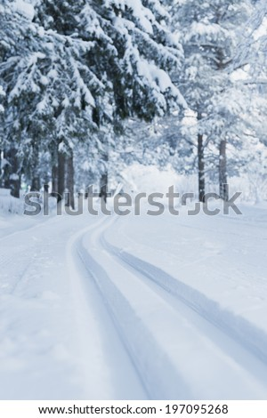 Skiing tracks through winter landscape, Kiruna, Lapland, Sweden
