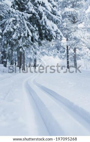 Skiing tracks through winter landscape, Kiruna, Lapland, Sweden - stock photo