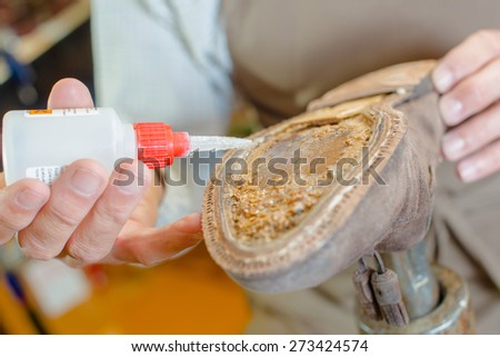Skilled cobbler fixing a shoe - stock photo