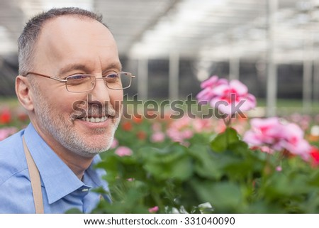 Skillful old gardener loves his job. He is standing in greenhouse and smiling. The man is looking at flowers with enjoyment - stock photo