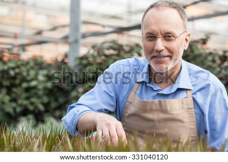 Skillful senior florist is planting seeds at greenhouse. He is standing and looking forward with joy. The man is smiling - stock photo