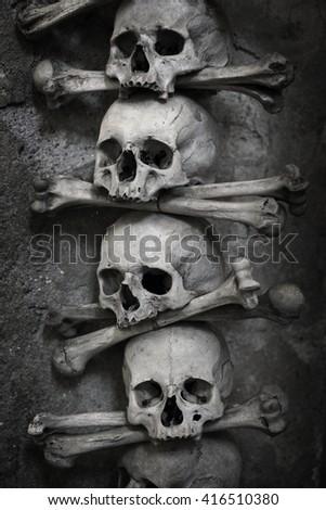skull and bones - stock photo