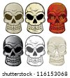 Skull Collection - stock vector