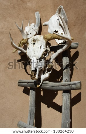 Skull decoration outside adobe-style structure in Truchas, New Mexico, along the High Road to Taos. - stock photo