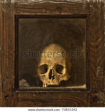 Skull on wooden reliquary - stock photo