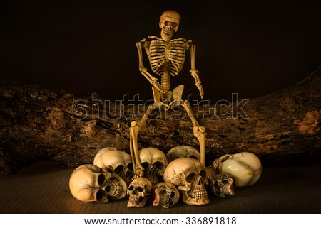 Skull resting on the old wooden  - stock photo
