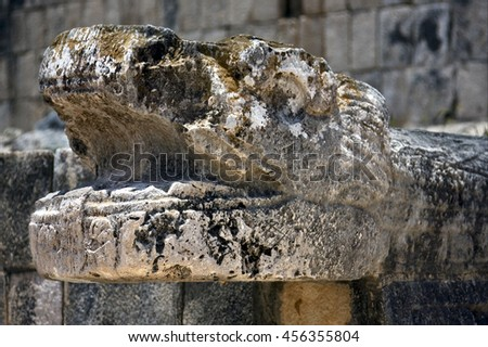 skull snake  mexico the  abstract incision in the old temple of chichen itza
