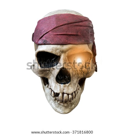 Skull wearing maroon bandanna with double exposure sun and silhouette branches on right eye, isolated on white background  - stock photo