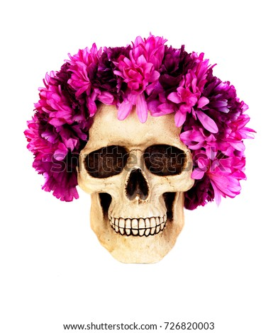 Skull wreath pink flower isolated on stock photo royalty free skull with a wreath of pink flower isolated on a white background mightylinksfo
