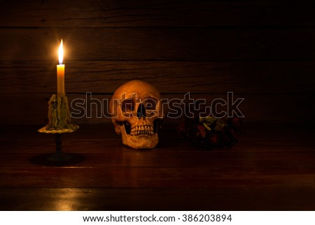 Skull with dry flower and candle light on wooden table /Still life style - stock photo