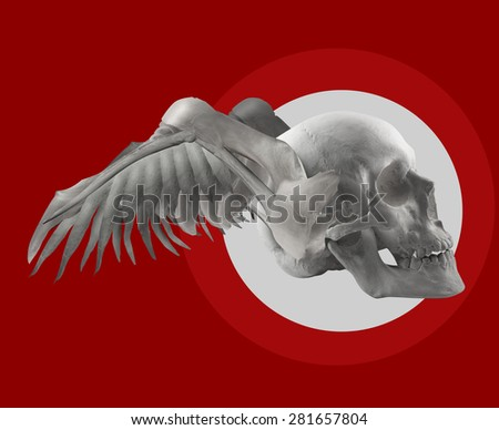 Skull with wings on red composition. Skull with wings composition on red color background with white circle shape. - stock photo