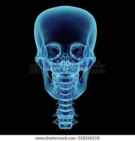 Skull x-ray front view,3D render art and illustration. - stock photo