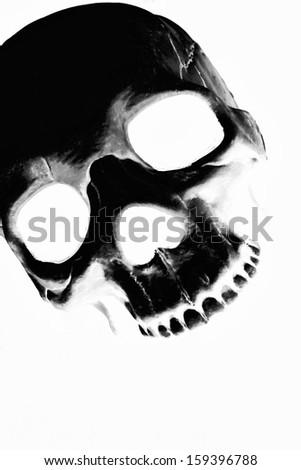 Skull xray. - stock photo