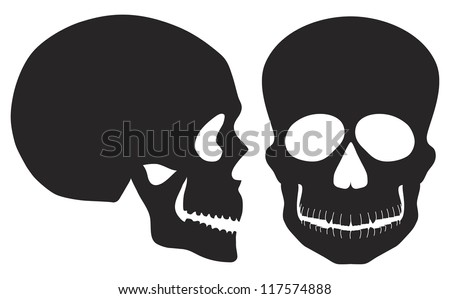 Skulls Front and Side View Black and White Illustration Isolated on White Background Raster Vector