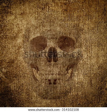 Skulls on the grunge background - stock photo