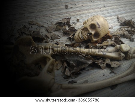Skulls, skeletons on the scrap heap of rotting leaves. Spooky, scary, Monochrome Black and White, rupture,