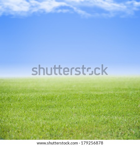 Sky an green field - stock photo