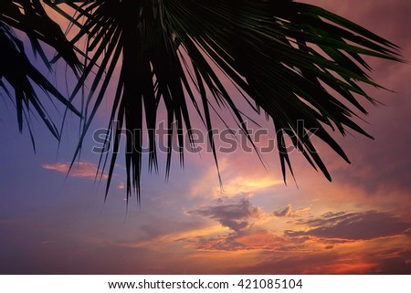 Sky, Bright Blue, Orange And Yellow Colors Sunset. Instant Photo, Toned Image,beautiful sunrise in the clouds, palm trees - stock photo