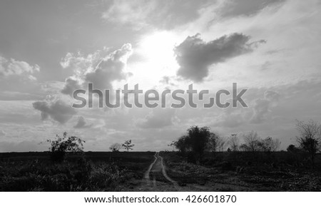 Sky - The rural road - Monochrome