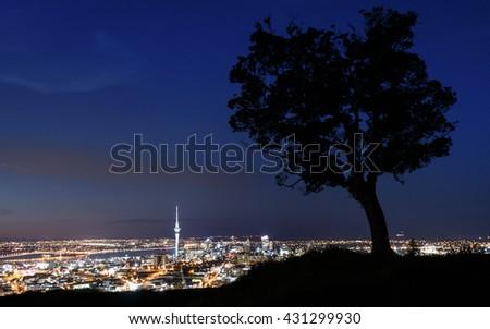 Skyline Auckland - stock photo