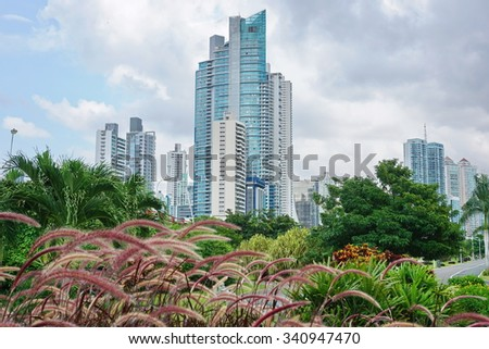 Skyscrapers with cloudy sky and plants in foreground, Panama City, Panama, Central America