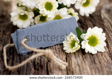 Slate and White flowers - stock photo