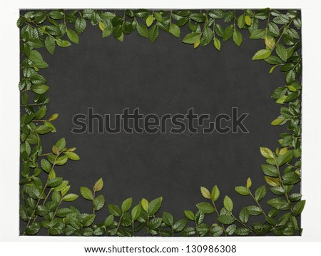Slate slate optic framed with elm branches. - stock photo