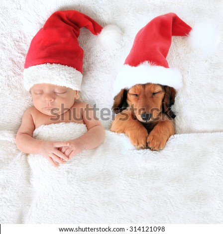 Sleeping Christmas baby and dachshund puppy wearing Santa hats.  - stock photo