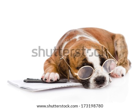 sleeping puppy with pen and notebook. isolated on white background - stock photo