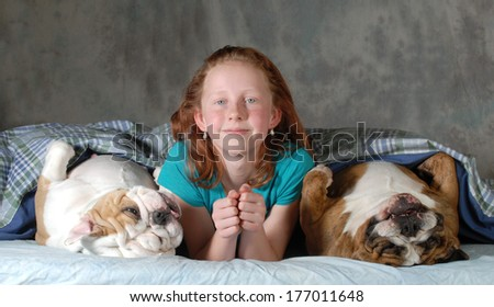 sleeping with the dogs - child with two bulldog in bed  - stock photo