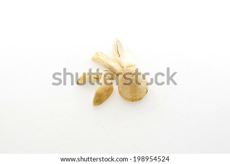 slice mushroom on white background - stock photo