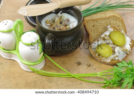 slice of bread with lard on stone background - stock photo