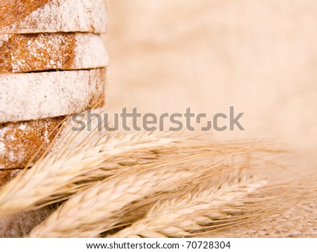 slice of bread with wheat - stock photo