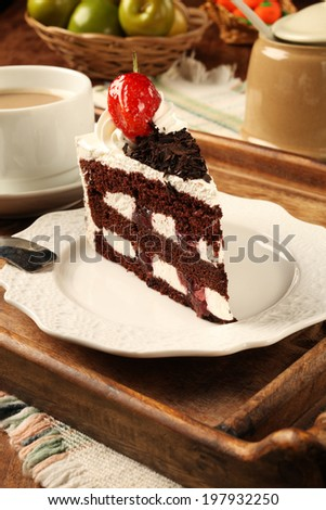 Slice of chocolate cake on the plate