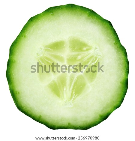 Slice of cucumber isolated on white