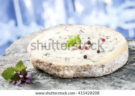 Slice of Fourme d'Ambert cheese on white background - stock photo