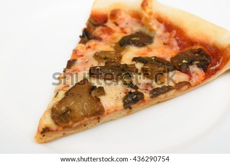 slice of pizza on a white plate - stock photo