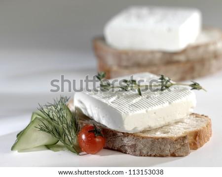 slice white cheese - stock photo