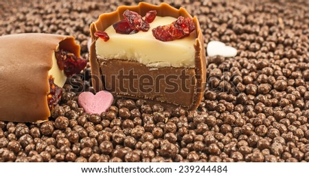 Sliced cherry brandy cranberry praline on chocolate balls background. Smooth milk chocolate with aromatic cherry brandy truffle centre and decorated with dried cranberry pieces - stock photo