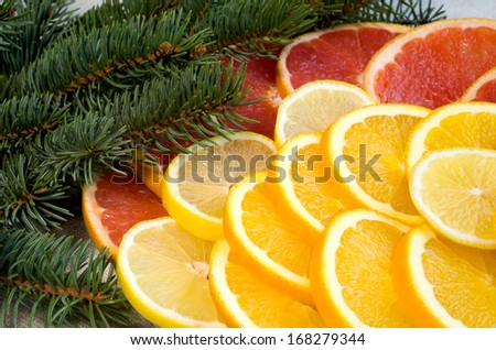 sliced �¢??�¢??lemons, grapefruit, oranges and spruce branches - stock photo