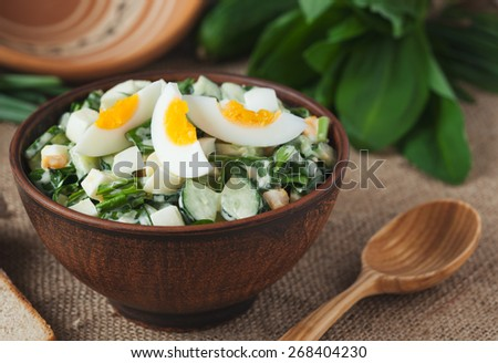 Sliced organic spring salad with chopped ramson in rustic style on vintage wooden background - stock photo