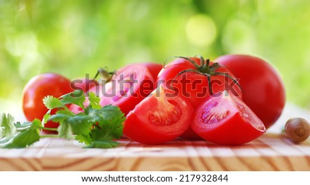 sliced tomatoes  and cilantro on table - stock photo