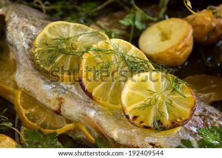 Slices of baked lemon on delicious rainbow trout fillet with dill and vegetables. - stock photo