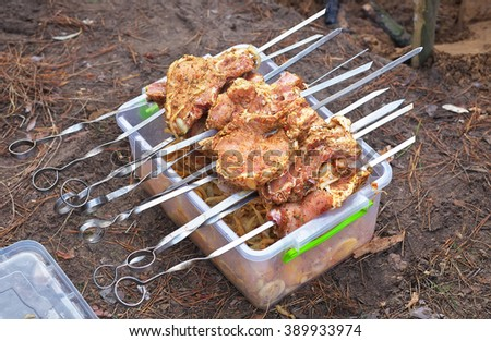 Slices of pork skewered on a skewers on container with marinade. Preparation for Cooking or Grill. Camping - stock photo