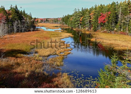 Slow moving river through an evergreen forest in fall.