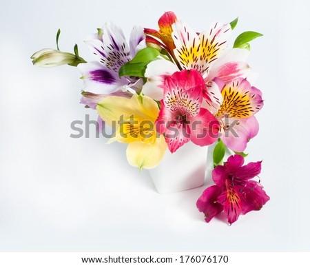 Small alstroemeria flowers in vase - stock photo