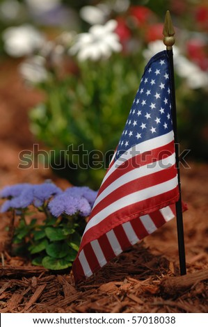Small American Flag located in a garden of red, white, and blue flowers taken on Memorial Day.