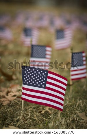 Small American flag on a lawn with more flags in the background. - stock photo