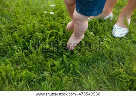 Small baby feet on the green grass.